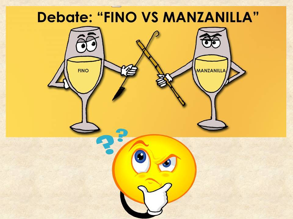 Fino vs Manzanilla, ¿Cuál ganó? ¿Which one won?