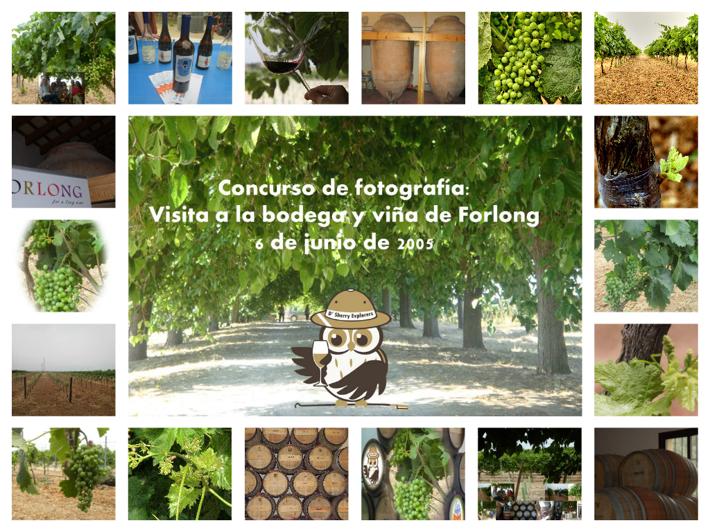 Concurso de fotografía de la visita a la Bodega de Forlong/Photo contest – visit to the Forlong winery