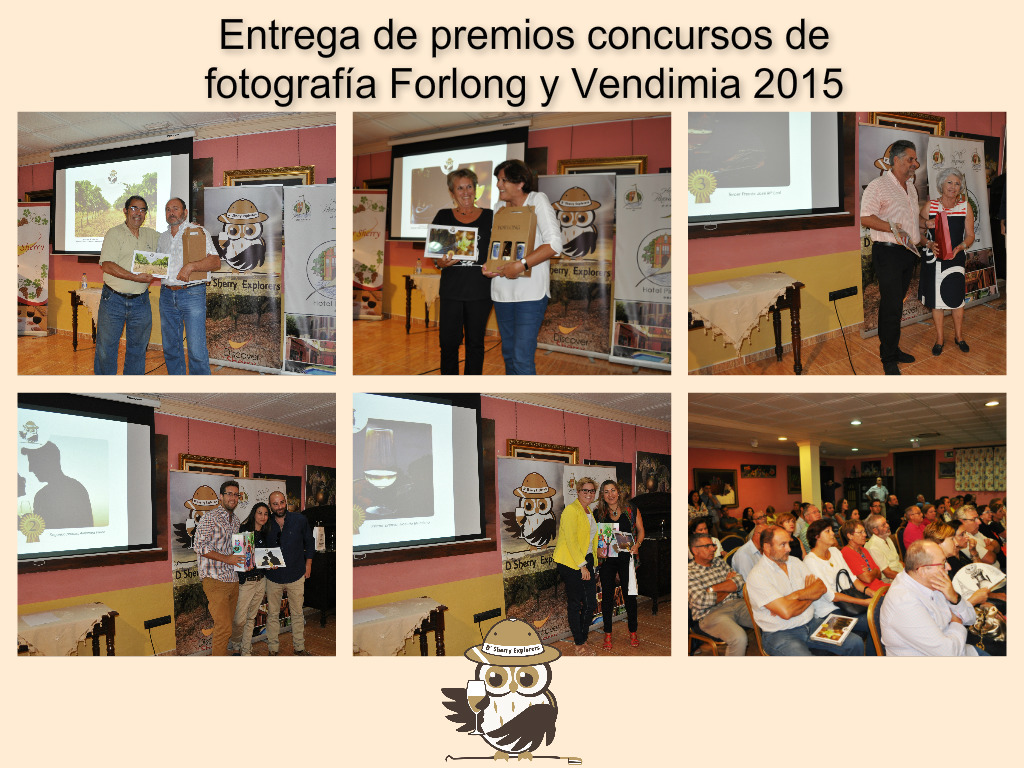 Collage premios fotos