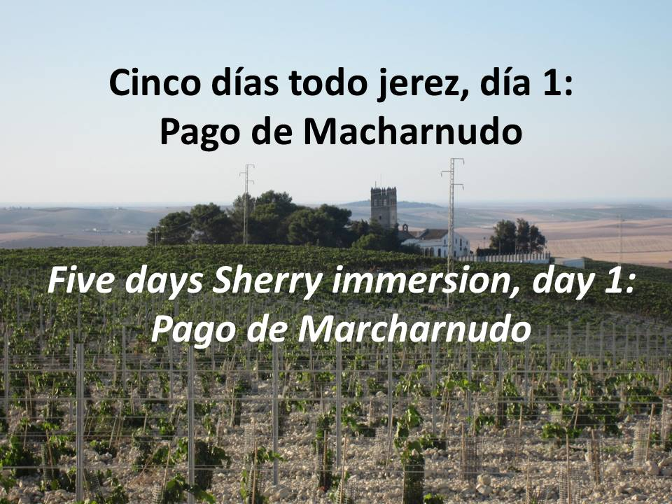 Pago de Macharnudo with The Taste of Place
