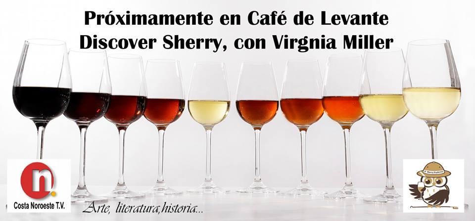 Café Levante teaser