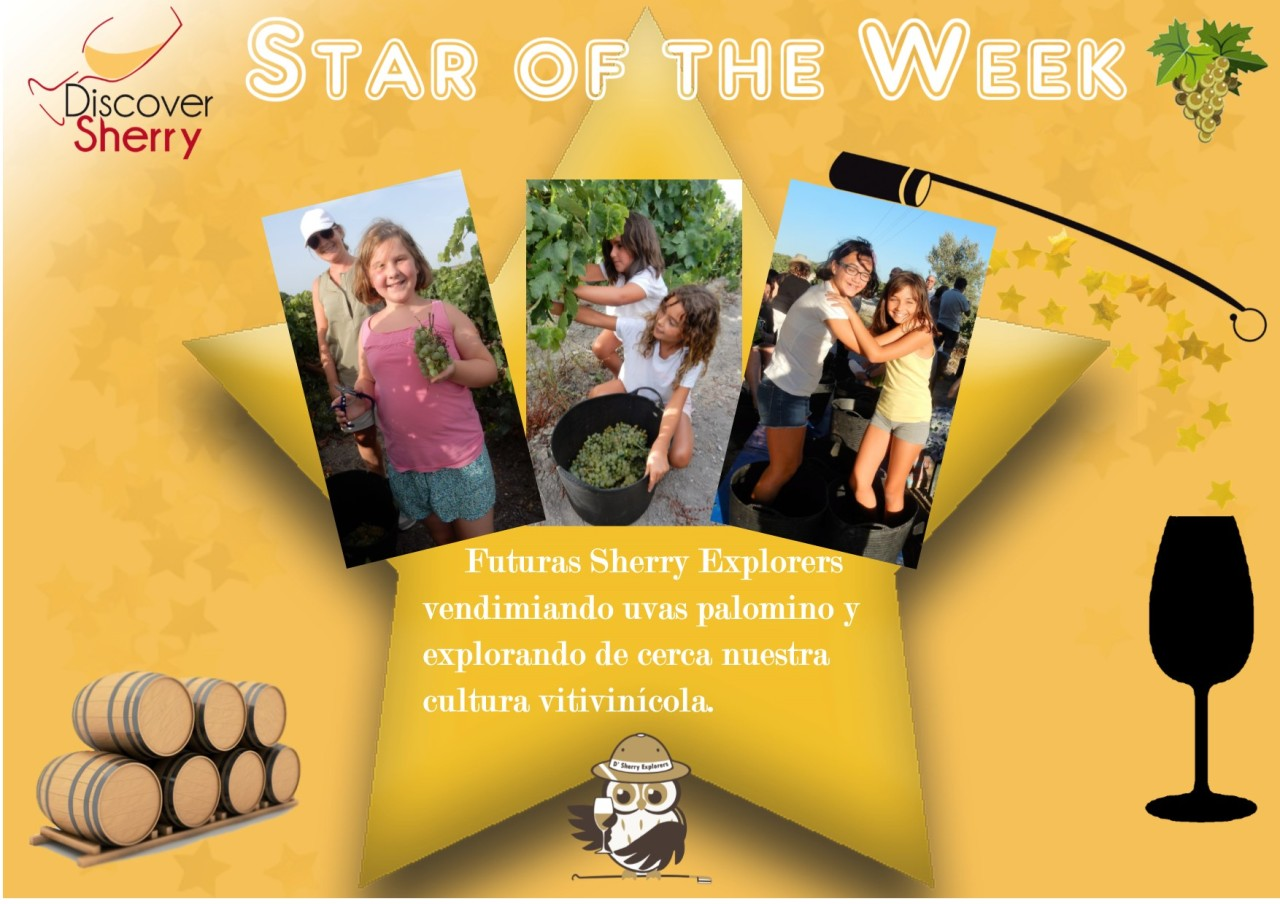 Discover Sherry Stars of the Week: Futuras Sherry Explorers aprendiendo a vendimiar / Future Sherry Explorers learning how to harvest