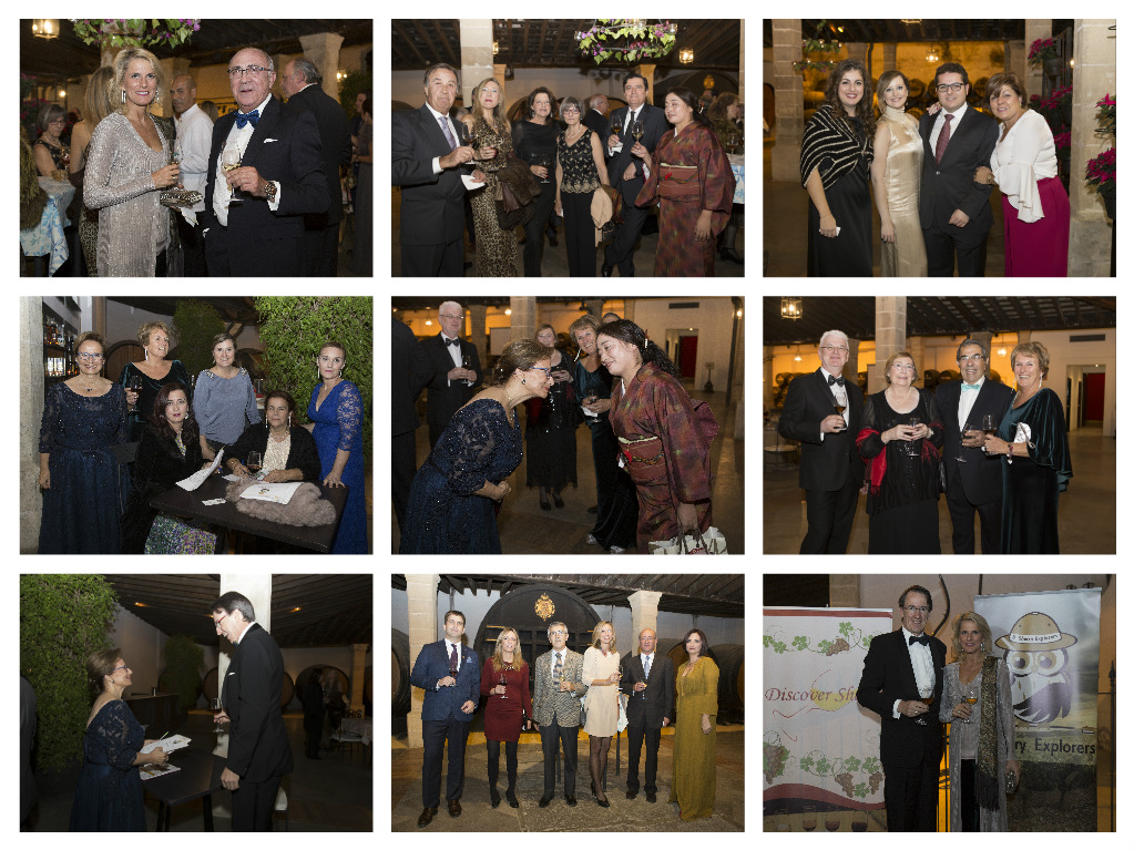 collage-2-gala