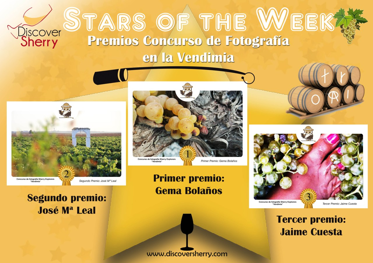 Stars of the Week: Ganadores concurso fotografía Vendimia /  Winners of the Grape Harvest Photo contest