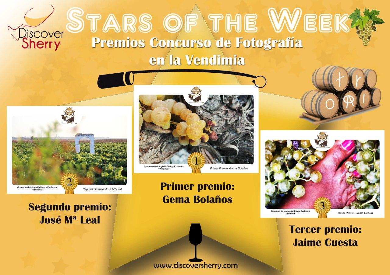 Stars of the Week: Ganadores concurso fotografía Vendimia /  Winners of the Grape Harvest Photocontest