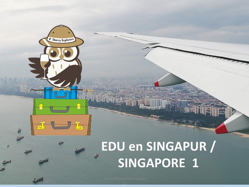 EDU visita Singapur