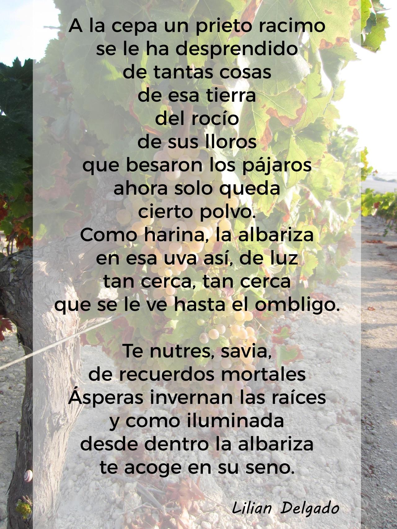 El arte de los Sherry Explorers: Poema de Lilian Delgado(Spanish)