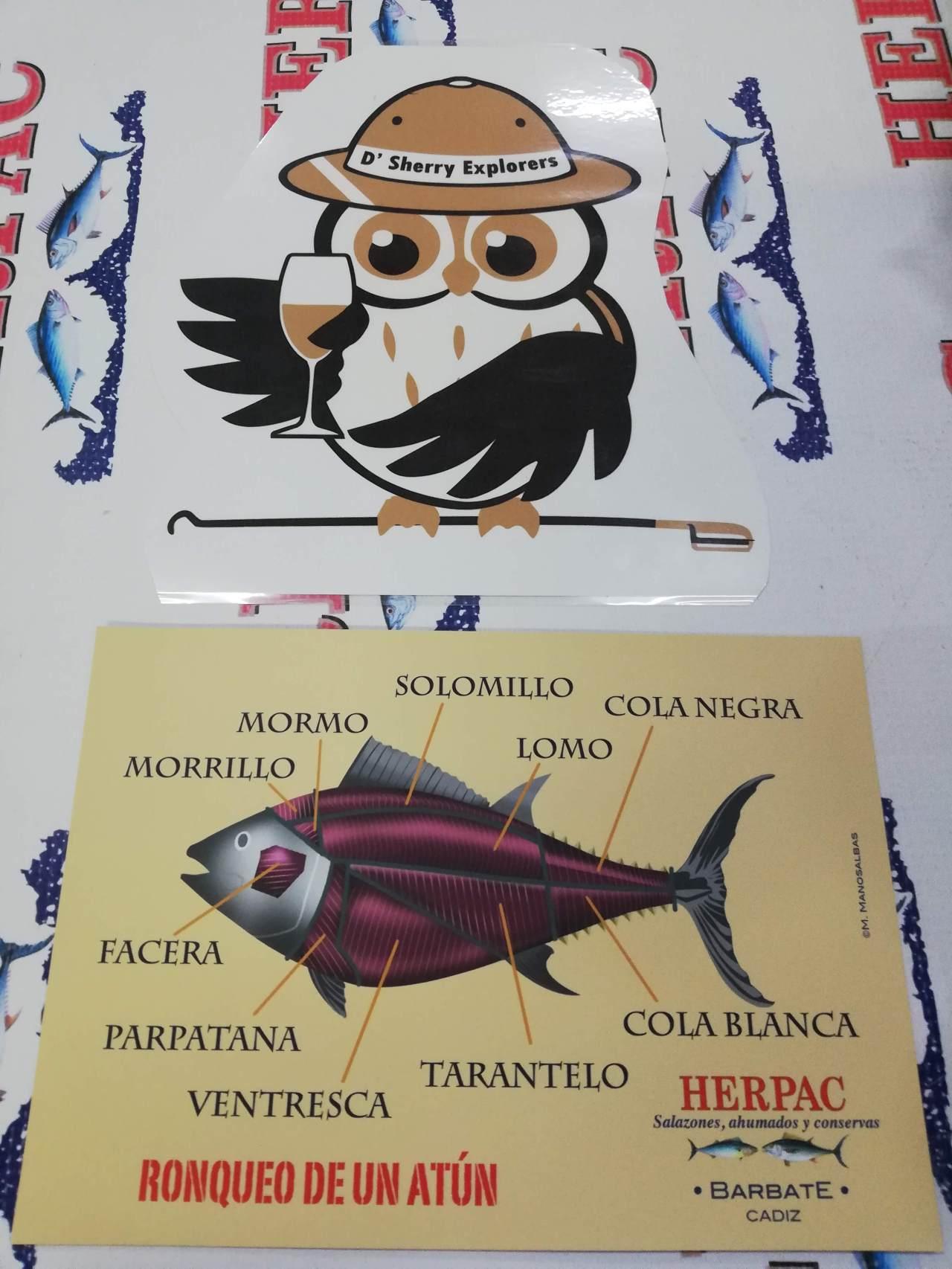 Los Sherry Explorers descubren el atún de Barbate/The Sherry Explorers discover tuna inBarbate